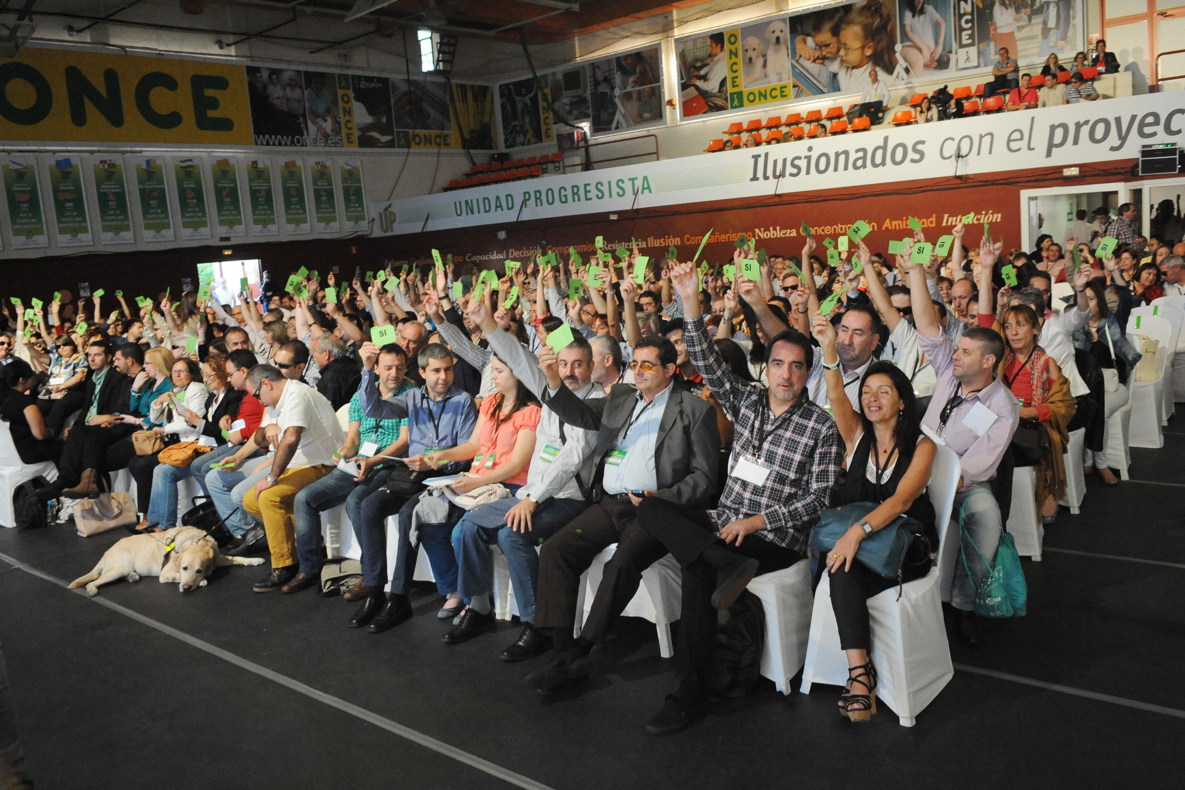 Socios de UP Votando