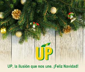 CHRISTMAS UP 2016
